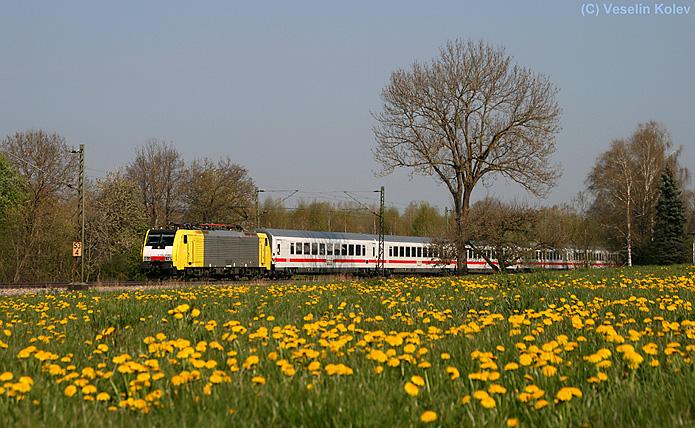Löwenzahnblüte in Oberbayern! Die der italienischen Gesellschaft NordCargo gehörende 189 989 wurde am Vormittag des 25.04.2010 nahe Ostermünchen aufgenommen. Der Zug, EC 85, ist von München nach Bologna unterwegs. Man hört, dass wahrscheinlich  bald ÖBB-Tauri die 189er ersetzen werden.