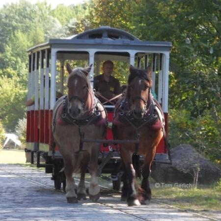 100 Jahre Straßenbahn nach Rüdersdorf: Erste Fahrt der Pferdebahn auf der stillgelegten Strecke im ehemaligen Kalkberge am Sonntag (26.08.2012)