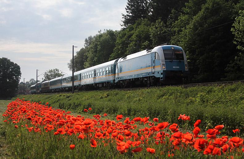 Sommerliche Atmosphäre und ein ALEX-Zug am 27.05.2012 bei Marzling.